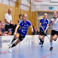 Alunda IBF - IS Saga 2012-02-12 Damer